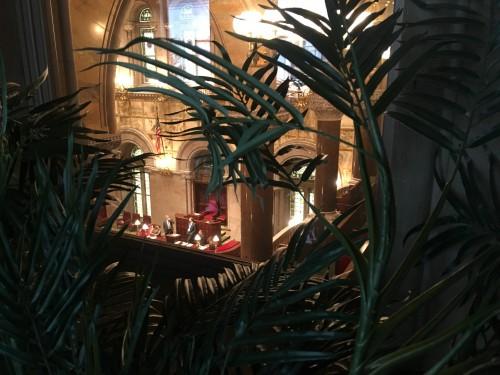 Lobby Day in Albany