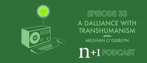 Episode 33: A Dalliance with Transhumanism